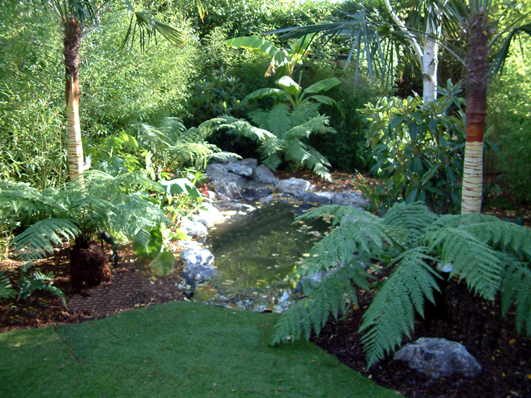 Tropical garden design and landscaping London | Urban Tropics