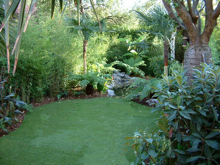 Tropical garden in Hampstead London | Urban Tropics