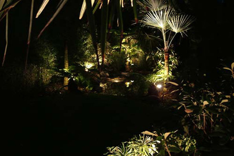 Tropical garden at night | Tropical garden design London by Urban Tropics