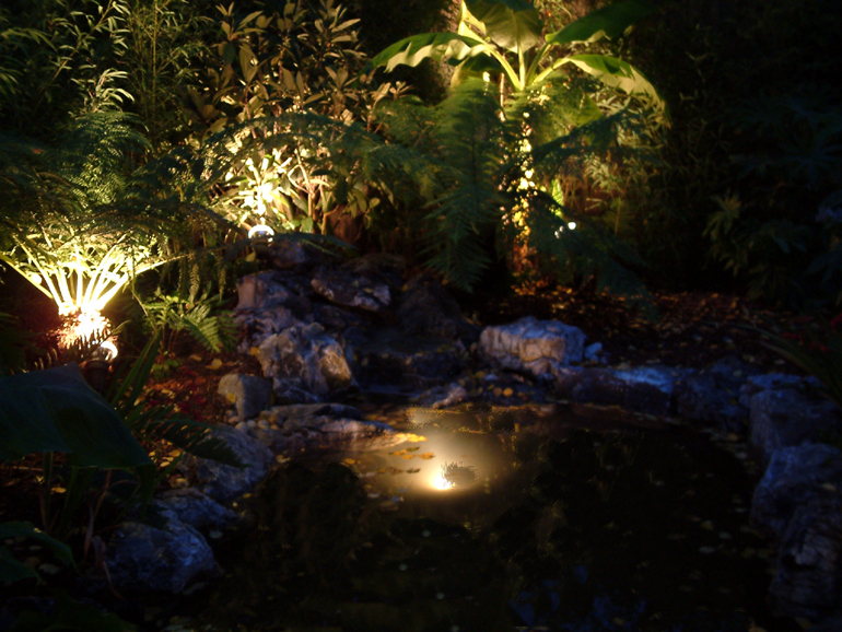 Pond lighting in a tropical garden London | Urban Tropics