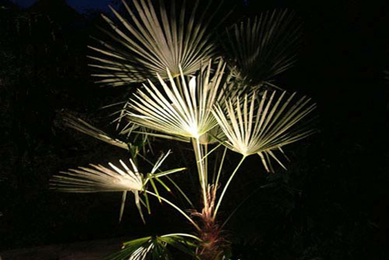 Garden lighting | Urban Tropics