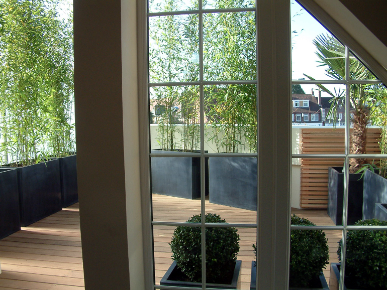 Contemporary roof garden design London viewed from living room | Urban Tropics