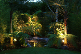 Lighting a tropical garden | London